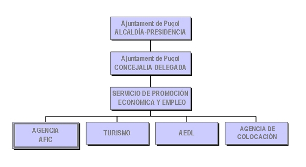 Organigrama AFIC Puçol