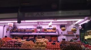 Pilar Frutas y Verduras selectas P320
