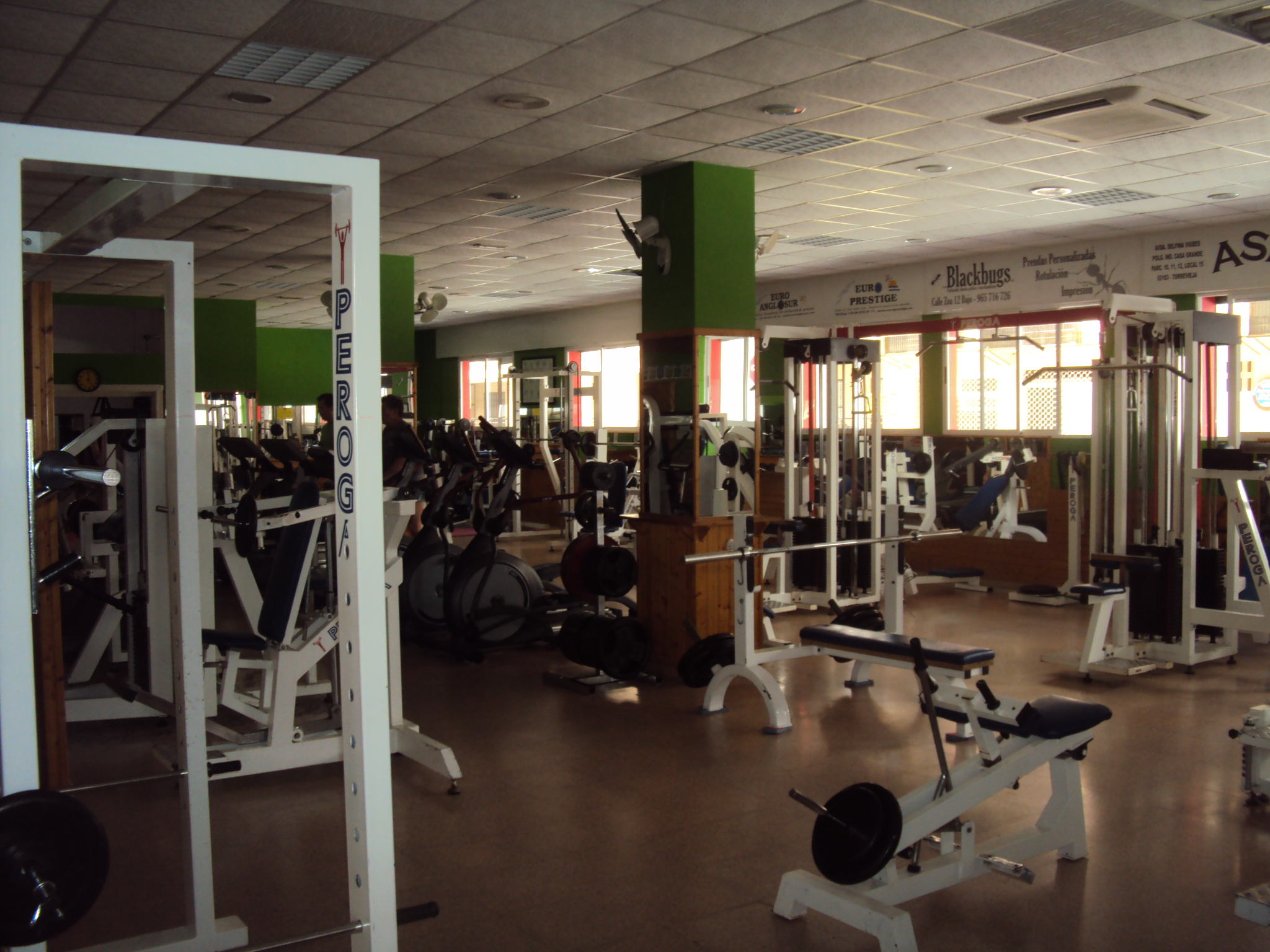 Athenea gym ayuntamiento de torrevieja directorio for Gimnasio torrevieja
