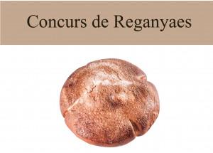 Alzira: Concurso de Reganyaes
