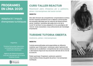 Programas en línea 2020