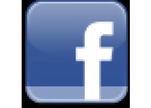 Curs de Facebook aplicat als negocis a Vial-real