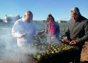 Benicarló. La Fiesta de la Alcachofa se presenta a la prensa especializada