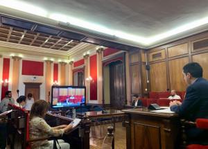 El Ple ha aprovat hui una nova línia d'ajudes que generarà un impacte d'1 milió d'euros en el comerç i hostaleria local