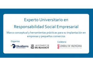Curso Experto Universitario en Resposabilidad Social Empresarial