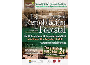 TAPES EN HISTÒRIA 2018: LA REPOBLACIÓ FORESTAL