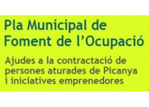 PLA D'OCUPACIÓ LOCAL 2020 - PICANYA